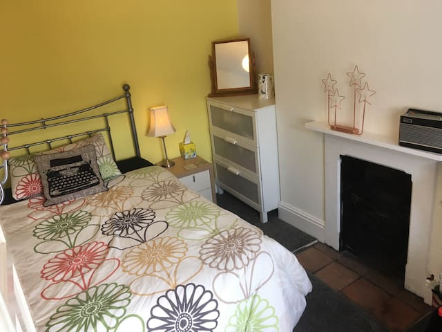 Double room in Victorian; near station & cricket! - Taunton - Casa