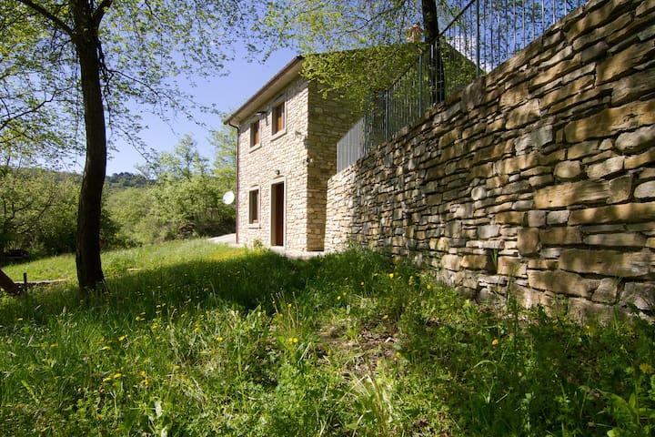 Vacanze in Podere a Sansepolcro nella natura - Pieve Santo Stefano - Rumah