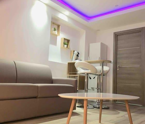 """Studio Cosy avec """"balneo""""  Lyon, métro à 400 m"""