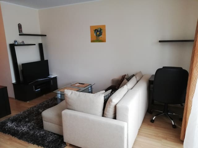 Cozy apartment near Tallinn Airport