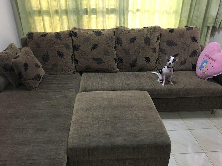 Little dog home near suvarnabhumi airport 6 mins