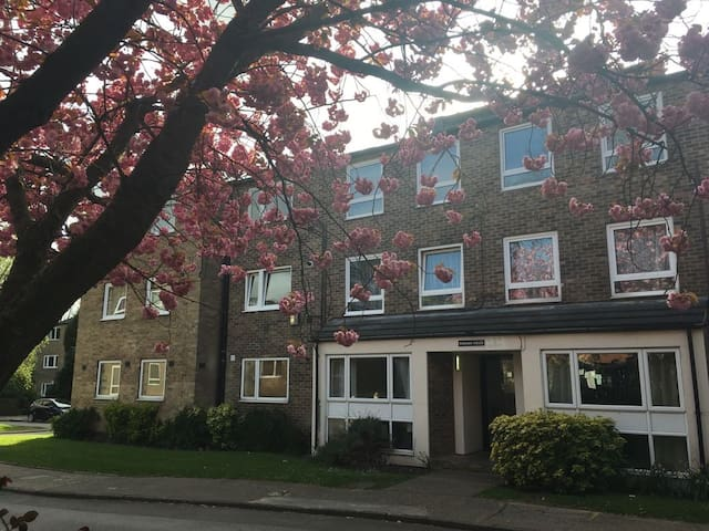 Top Floor 2BR / 3 Bed Flat in Leafy Mapperley