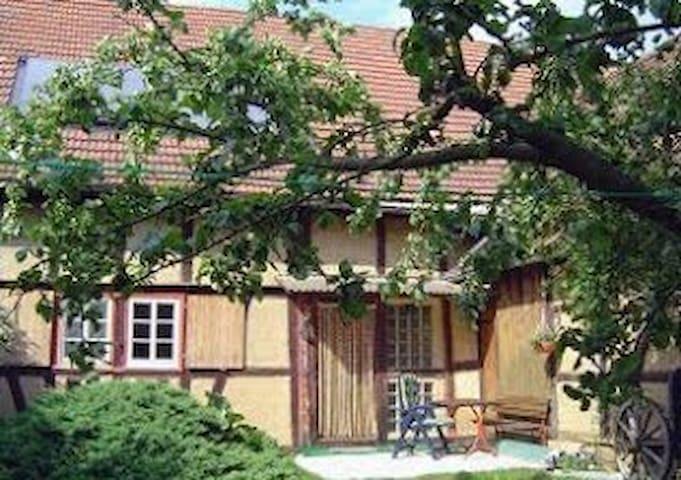 Idylle nahe Eisenach und Nationalpark Hainich - Berka vor dem Hainich - Pis