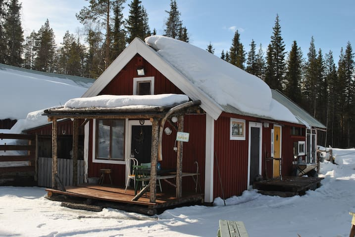 "Guest Cottage ""Marley"" - Porjus - Hut"