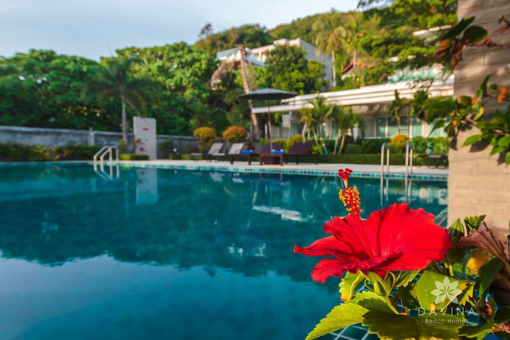 Davina Beach Homes beachfront estate with private pool