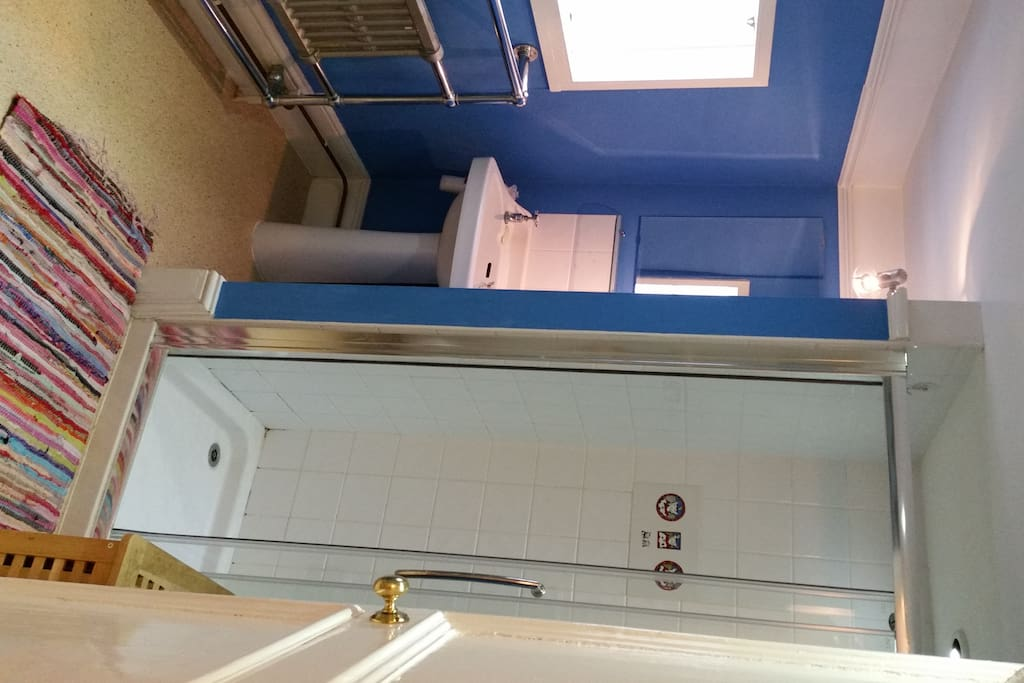 Shower Room with double shower, basin and loo and excellent water pressure in the shower!