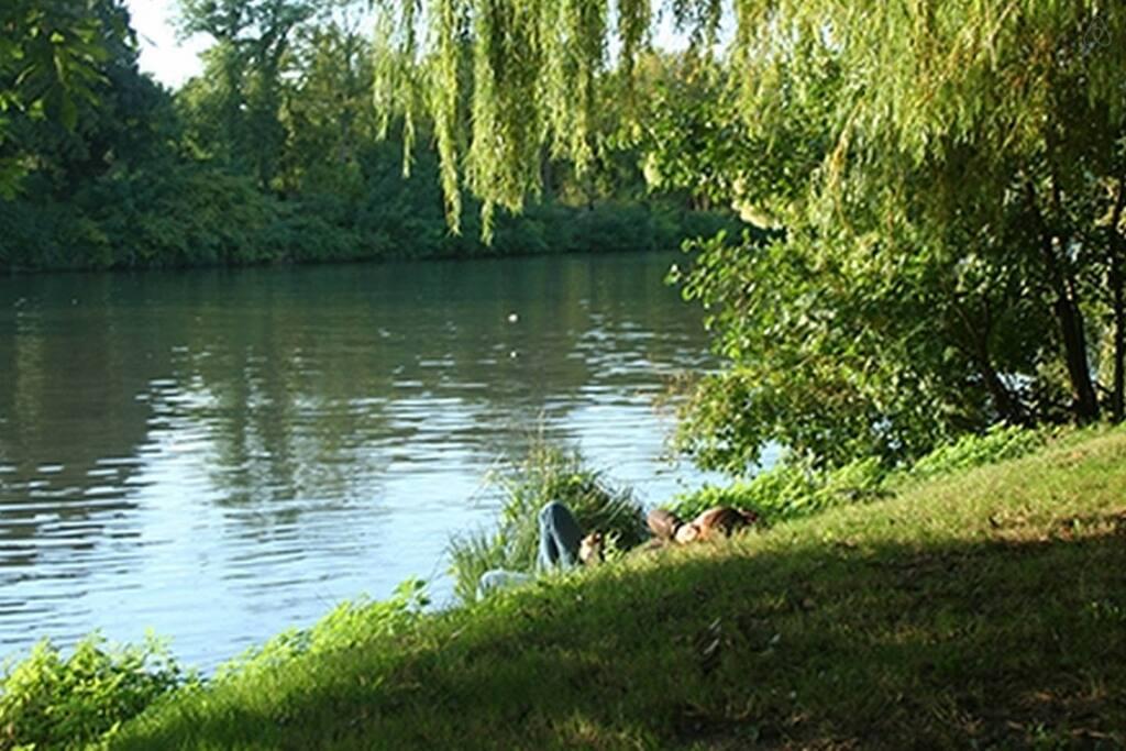 Berges de Seine à 10 min à pieds