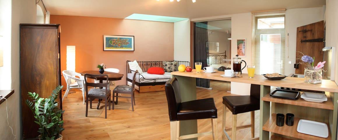 Ferienwohnung ökologisch - historisch - kunstvoll - Torgau - Apartment
