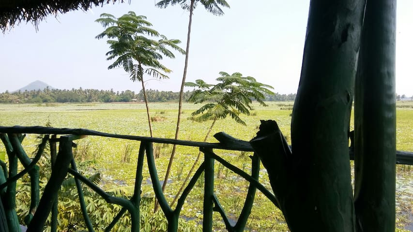 It is Place on the tree @ lake view - Southern Province, LK - บ้าน