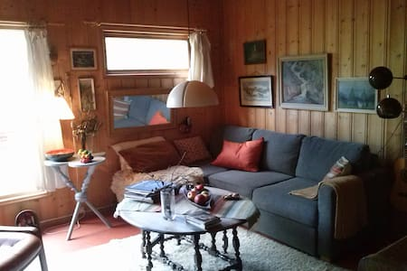 Nice cottage in forest near to Oslo - Nedre Eiker