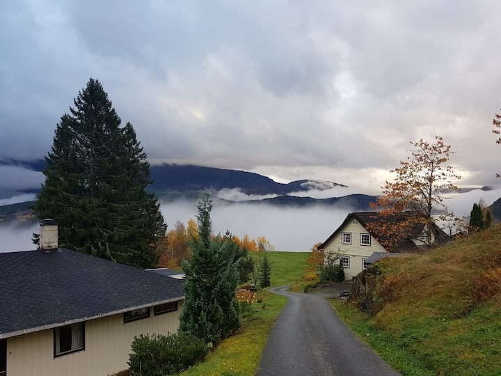 Visit amazing Ulvik where you find amazing nature