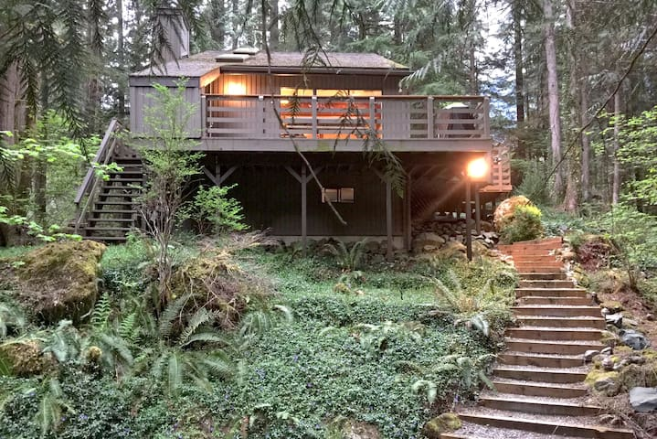 Mt. Baker Lodging - Cabin #26 - 2-story cabin in the woods