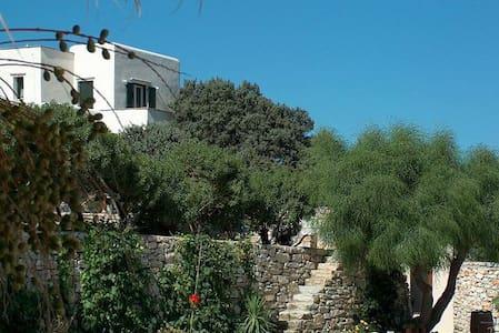 Villa with sea view, two bathrooms - Naxos