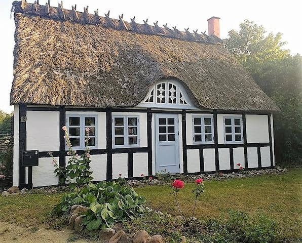 Charming thatched cottage in Fyn