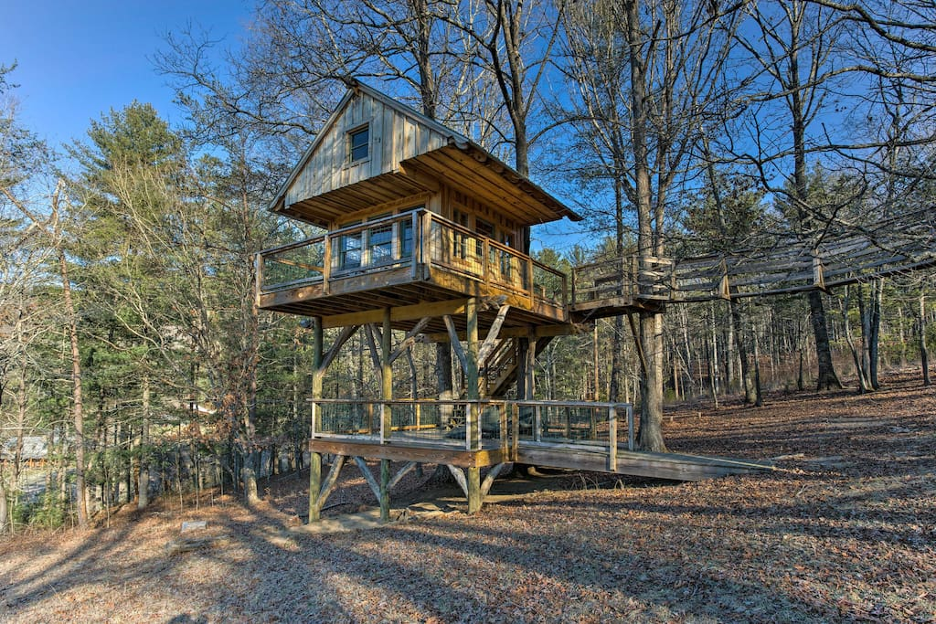 Bunker up in the shared tree house or take the bridge down to trek along the rivers and streams of the forest.