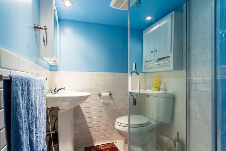 Luxurious Apartment in Toronto