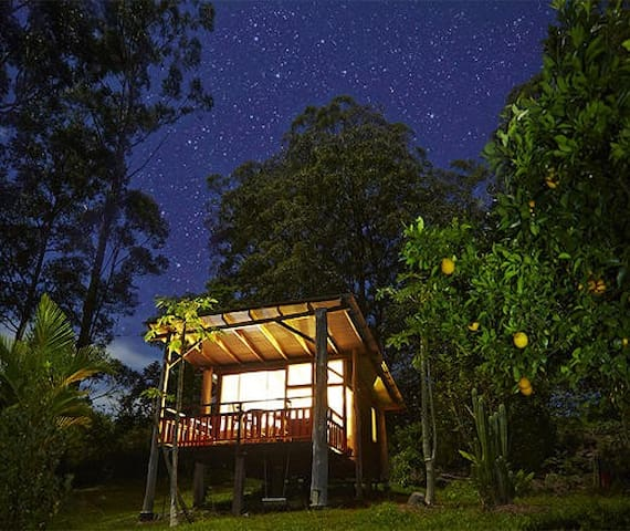 Rainforest eco chalet & breakfast. - Wadeville - Xalet