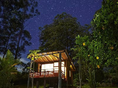 Rainforest eco chalet & breakfast on request.