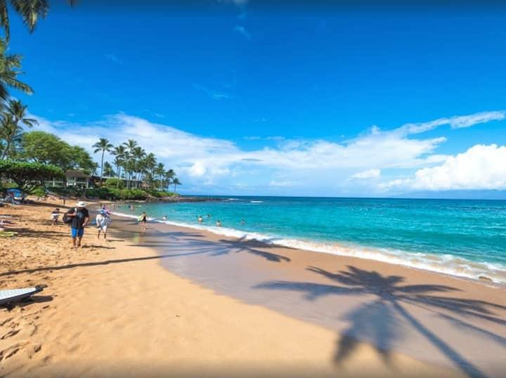 300 Steps to Beach   Napili Shores   New A/C