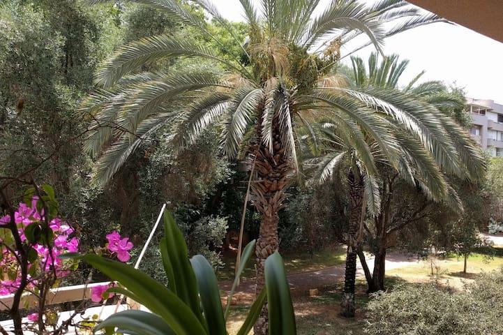Cozy B&B room near IDC Herzliya (500m) - Welcome!