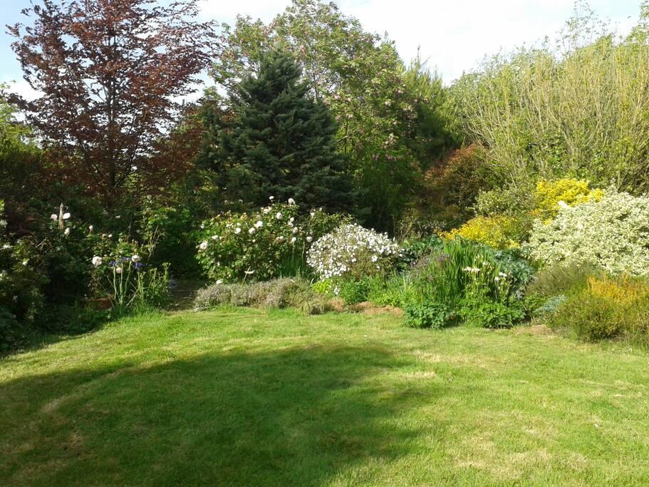 Jardin arrière : vue de la terrasse