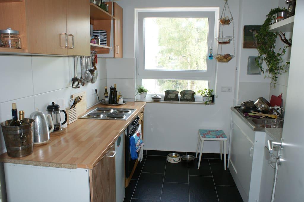 Zimmer Wohnung Darmstadt Martinsviertel