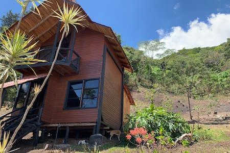Cabaña en San José. Bosque y excelente vista (#1)
