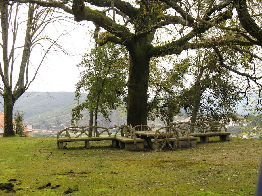 Amplo relvado com mesa e bancos para picnics.