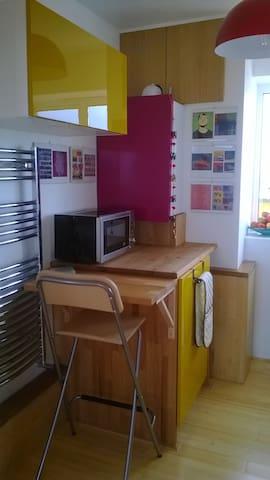 Pleasant Single Room in zone 1 - London. - Apartment
