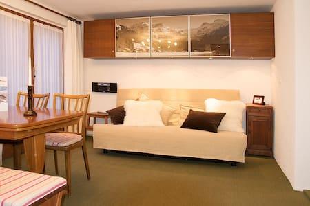 CHALET PONY 1959 (4-bed apartment) - Lenk - Apartament