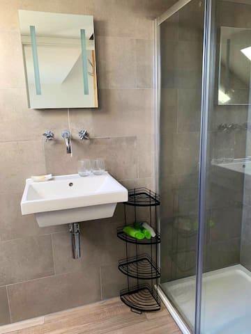 En-suite bathroom with walk in shower,  toilet and basin off the double bedroom