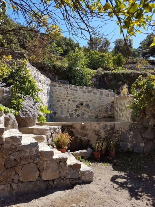 Stone stairs to plunge pool and sauna
