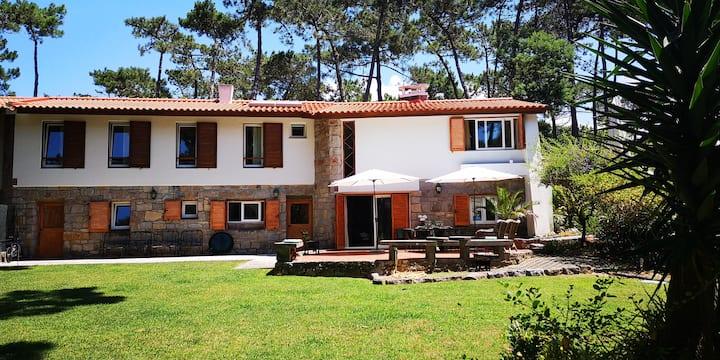 Casa com vista sobre o pinhal