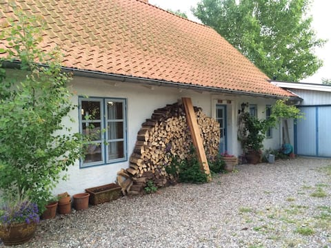 Ostsee-Kaminhäuschen, Alleinlage auf 7000 m2 grün