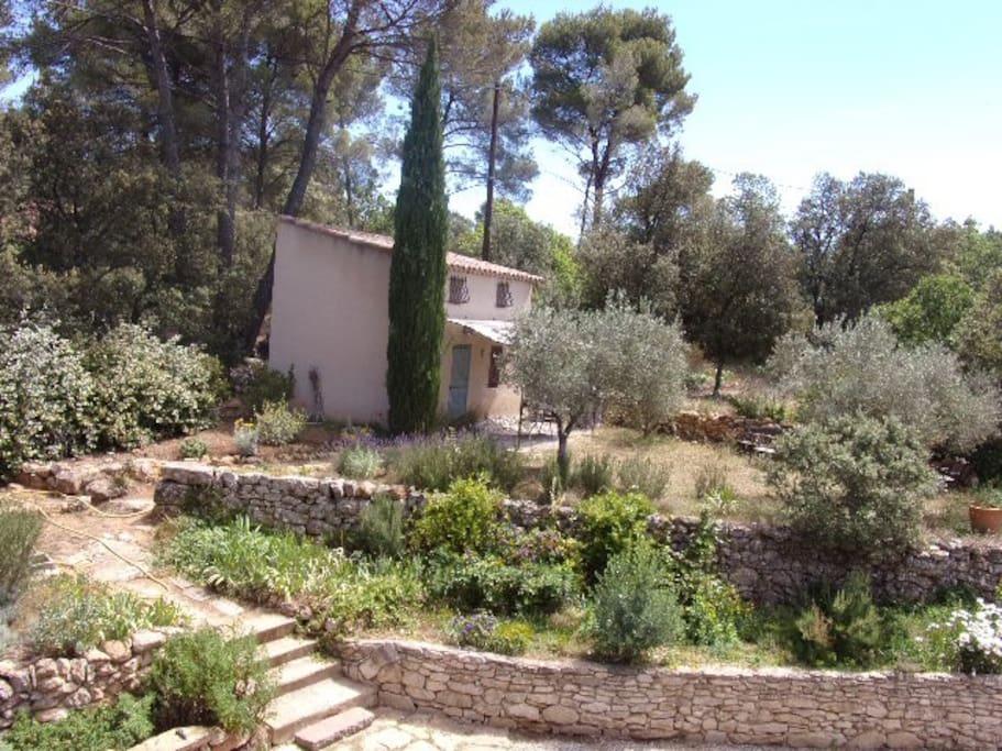 Le jardin privatif devant le cabanon.
