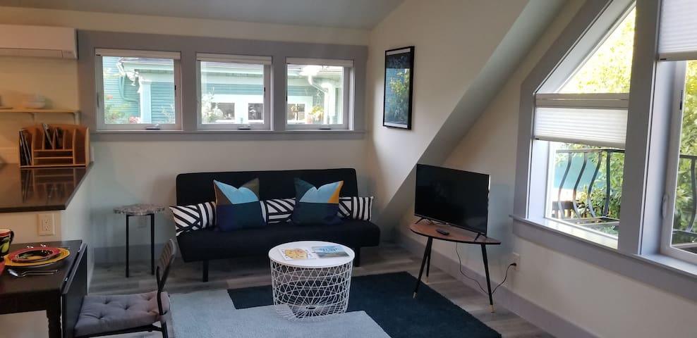 Comfortable sofa bed and Roku TV