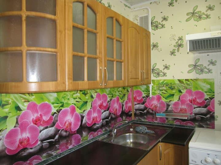 Уютная 1 к.квартира в Пушкине