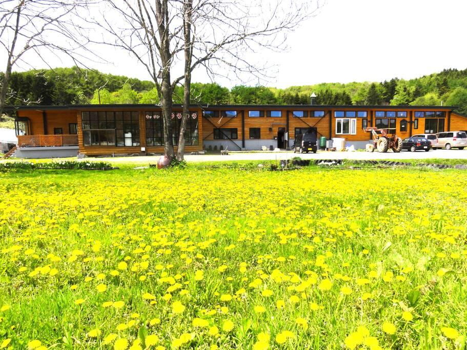 【Main House】Front desk, Guest house, Laundry, Farm restaurant, Shops, Lounge.