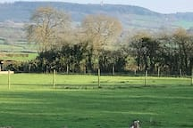 Fabulous views across the Witham Vale