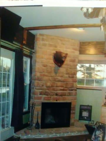"Fireplace in the ""Bear Hug Room"""