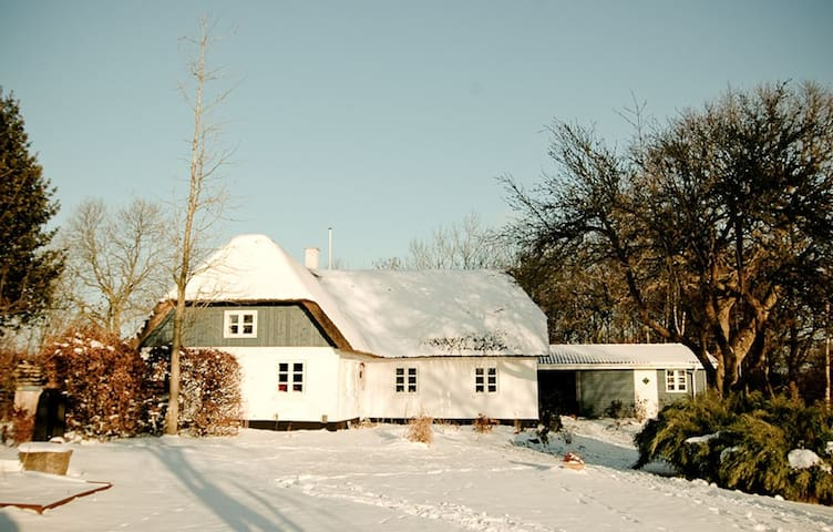 Ørbyhage Bed & Breakfast - Haderslev - Bed & Breakfast
