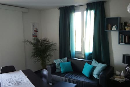 Private room in a nice and modern apartment - Prilly - Appartement