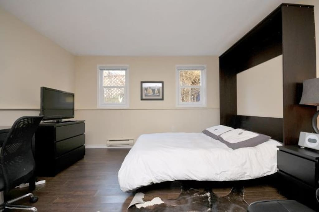 Queen Size Murphy Bed with Plasma TV
