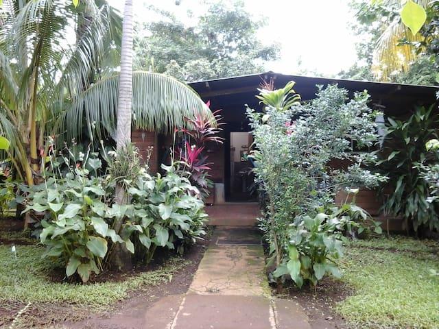 Casa Hostal el Indigena/Main room - Ticuantepe - Rumah