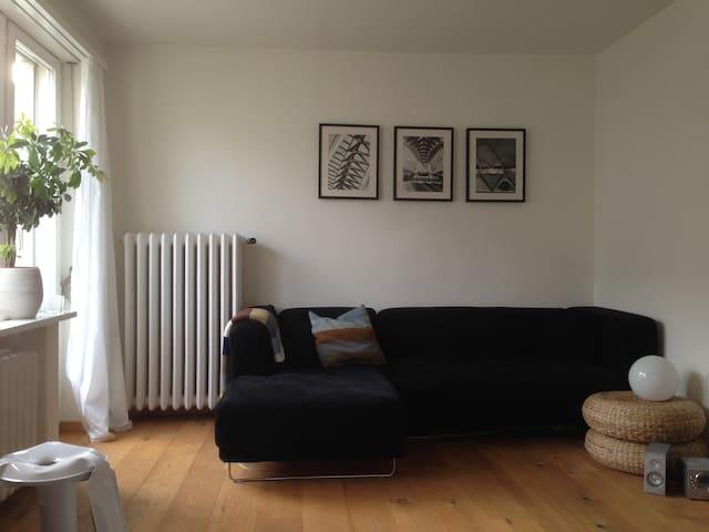 Schöne 1-Zimmer Dach-Wohnung - Zürich - Appartement