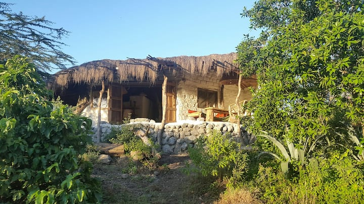 Standard Holiday Home Hillside - Africa Amini Life