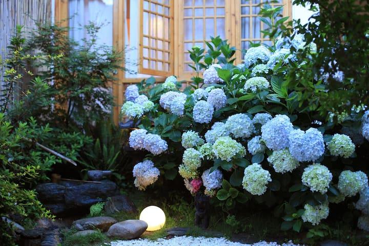 大理古城中心位置超适合拍照的小院子,最大的一间榻榻米套房【夏至】