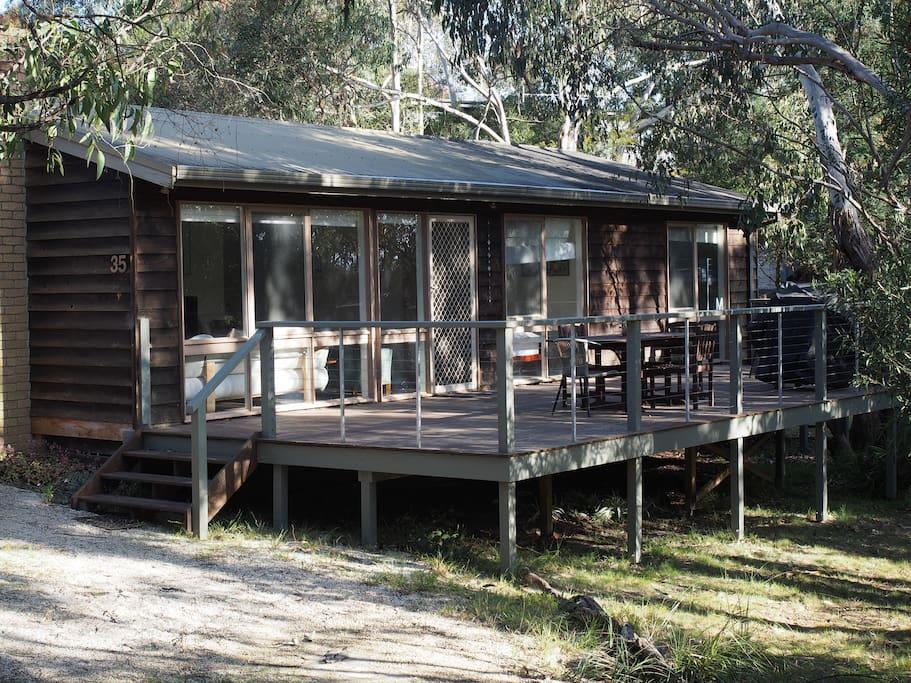 Cedar Cottage and the bush surroundings.