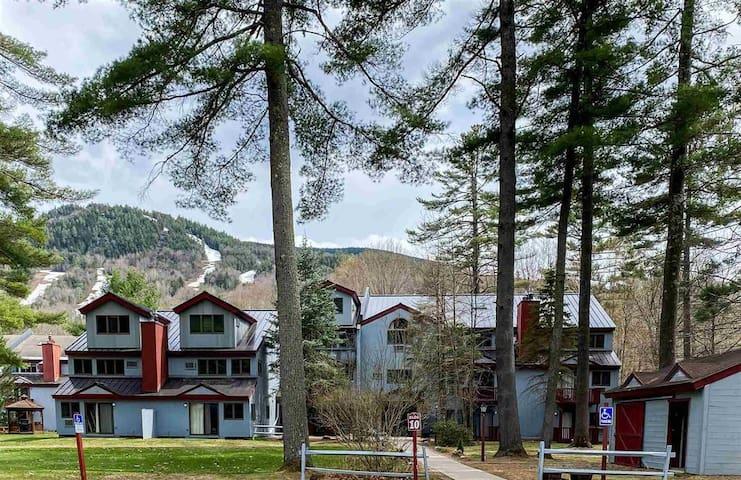 Attitash Mountain Resort Condo - Sleeps 12!