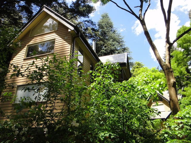 Treetops Guesthouse at Lochiel